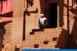 La luce assoluta dell'Etiopia – Esperienze di Montagnaterapia
